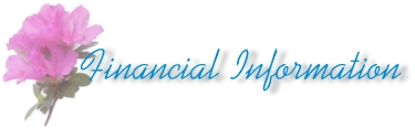 Financial Information Title Pic